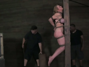 Bdsm, Big butt, Big tits, Blondes, Bondage, Busty, Dungeon, Fake tits, Fetish, Humiliation, Massive tits, Mega tits, Milf, Mom, Monster tits, Pain, Slave, Spanking, Torture, Whip