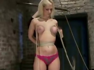 Bdsm, Blondes, Bondage, Boobs, Bound, Clamp, Domination, Fetish, Gagged, Hogtied, Nipples, Panties, Rough, Slave, Tied up, Tits