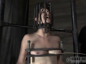Bdsm, Bondage, Caning, Domination, Humiliation, Punish, Slave